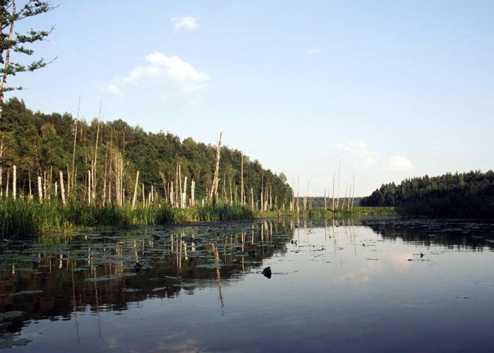 Rospuda_river_fixed